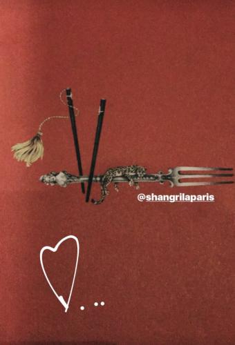 Placement de personnalités Hôtel Shangri-La Paris : fauve hautot