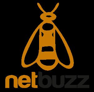 Netbuzz - logo - Ritter consulting